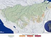 Amazônia: fogo devasta mais que desmatamento, aponta estudo inédito