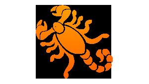 horoscopo personalizado terra: