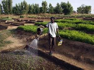 São necessários de 2 mil a 5 mil litros de água para produzir a alimentação diária de uma pessoa Foto: Reuters