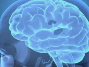 Os cientistas ainda não sabem a que se devem estas diferenças de mecanismos entre os dois sexos Foto: BBCBrasil.com