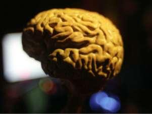 Falta da proteína Arc poder ter relação com Alzheimer e autismo Foto: BBCBrasil.com