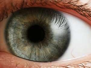 De acordo com especialistas, parte mais difícil do projeto é fazer com que lentes permitam oxigenação do olho Foto: Petr Novák / Wikipédia