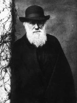 O cientista britânico foi responsável pela formulação da teoria da evolução das espécies Foto: Getty Images