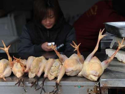 [Imagem: gripe-aviaria-china-afp.jpg]