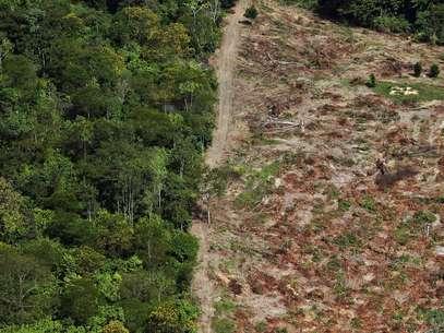 A fiscalização é apontada por especialistas como um dos maiores problemas para a eficiência do Código Florestal no Brasil; na foto, o desmatamento na Amazônia Foto: Getty Images