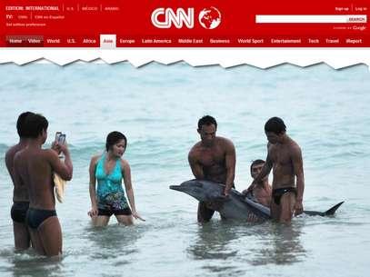 Turistas preferiram tirar fotos ao lado do animal em vez de procurar ajuda Foto: CNN / Reprodução