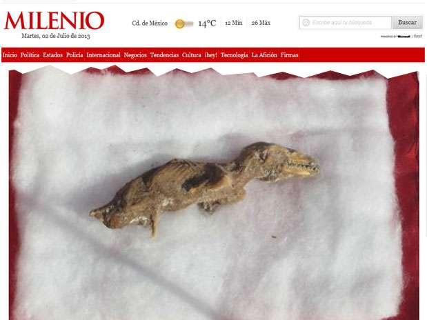 Exemplar do que pode ser um feto de velociraptor foi descoberto por trabalhadores em uma obra Foto: Milenio / Reprodução