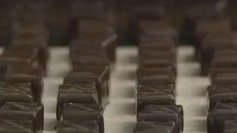 Chocolate cru promete ser o queridinho dos fãs de orgânicos