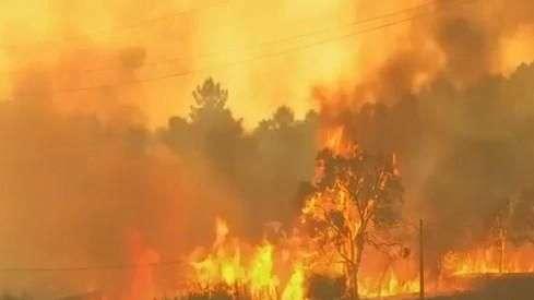 Em verão escaldante, incêndios atingem a costa da Europa