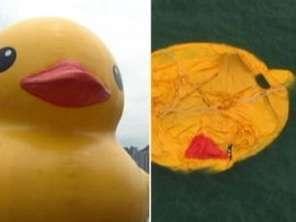 Mistério com pato gigante intriga moradores em Hong Kong