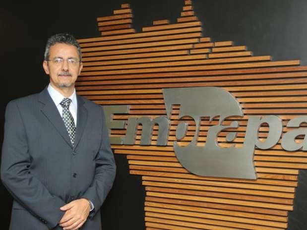 Foto: Embrapa