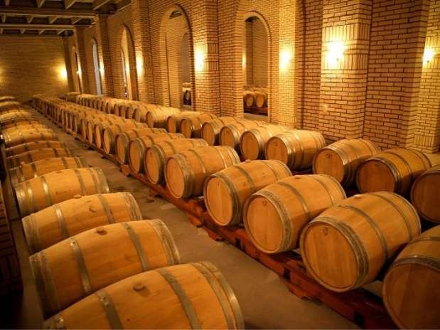 Foto: Wines of Brasil, Divulgação